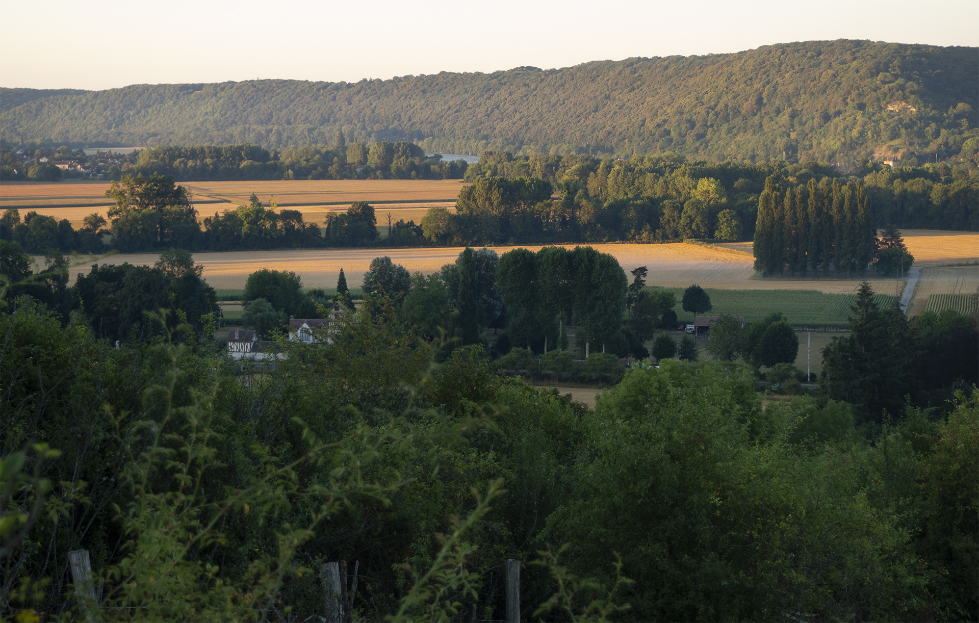 Giverny - Sunrise lighting the details of the Seine Valley's summer landscape